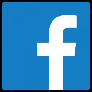 Anne Duquesne guide conferenciere logo Facebook